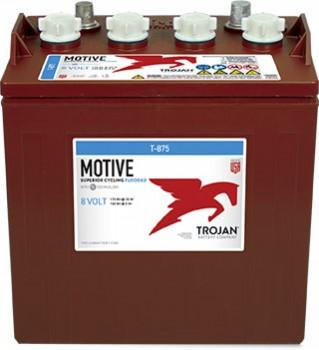 Baterie tractiune pentru nacele TROJAN T-875, 8V